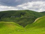 Northumberland Hills