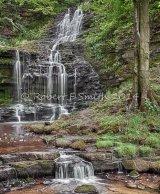 Scalebar Falls