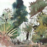Botanic Gardens Cambridge - 2013