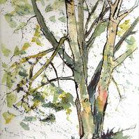 Littleport Tree - 2013