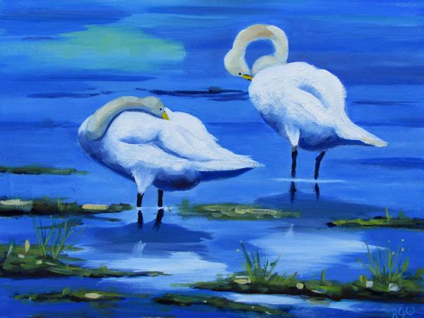 Welney Swans