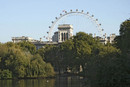 St James Park & the BA London Eye