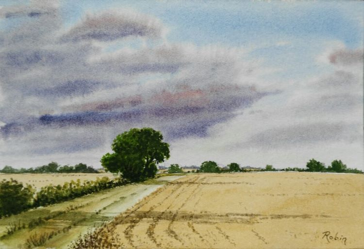 Before the Harvest. SOLD