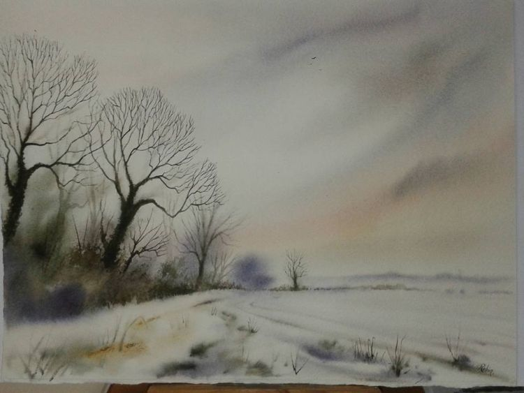 Big Hedgerow, winter. NFS