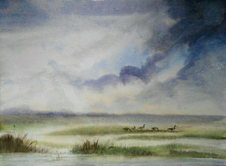 Canada Geese at Frampton Marsh NFS
