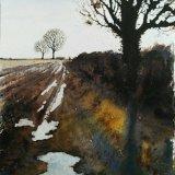 Field Edge Along Mareham Lane
