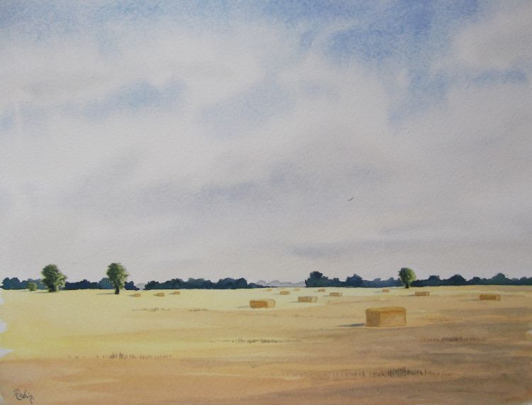 Field of Bales near Threekingham, Lincolnshire  NFS