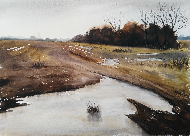 Muddy Field, Big Puddle