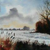 The Field Edge in Winter