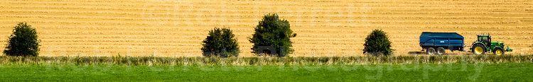 Avebury Harvest