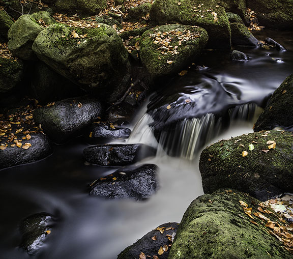 Padley Gorge, Derbyshire