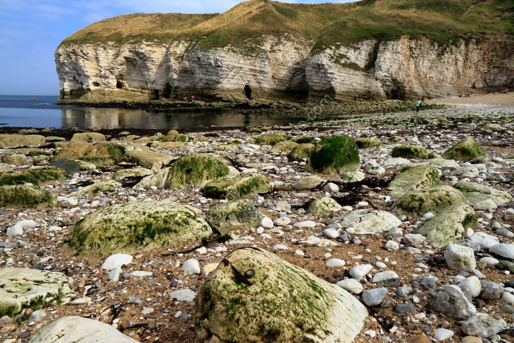 Low tide revealing cliffs and rocks at Flamborough North Landing