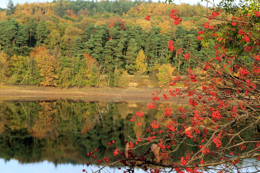Autumn at Fewston Reservoir, Washburndale