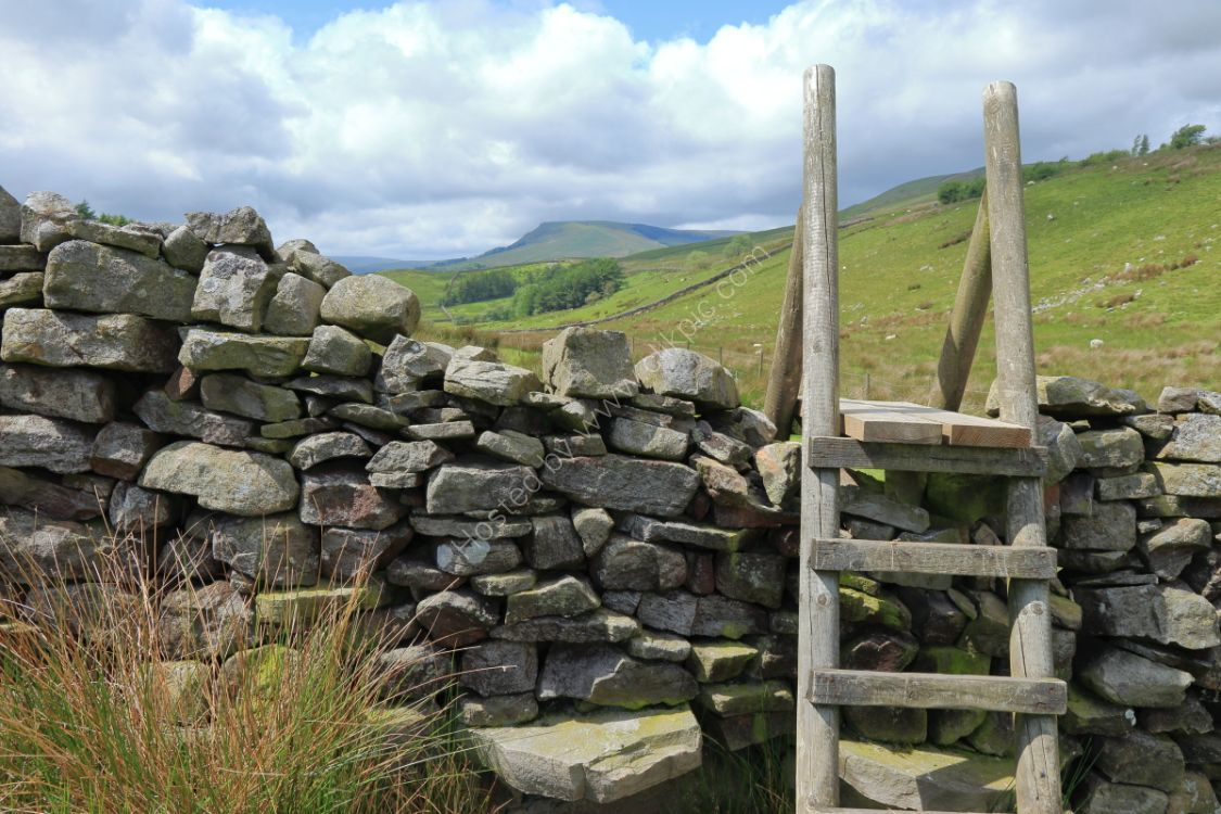Ladder stile over drystone wall on Abbotside Common, Wensleydale