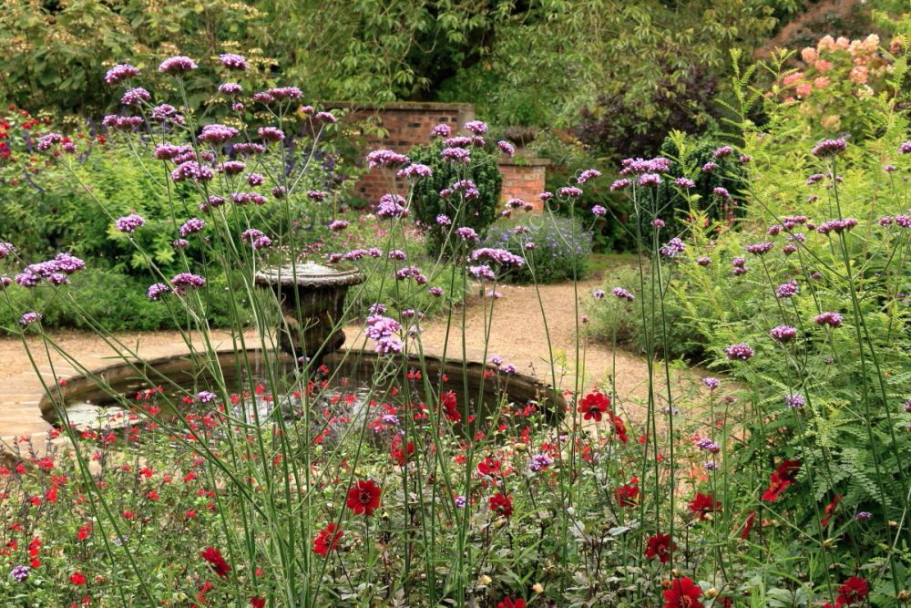 Newby Hall garden fountain, with verbena