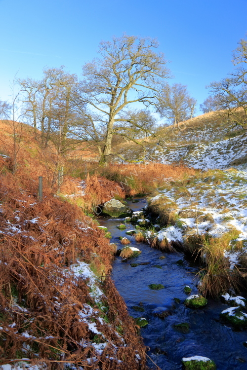 Hudson Gill Beck, Barden Moor, after a light fall of snow