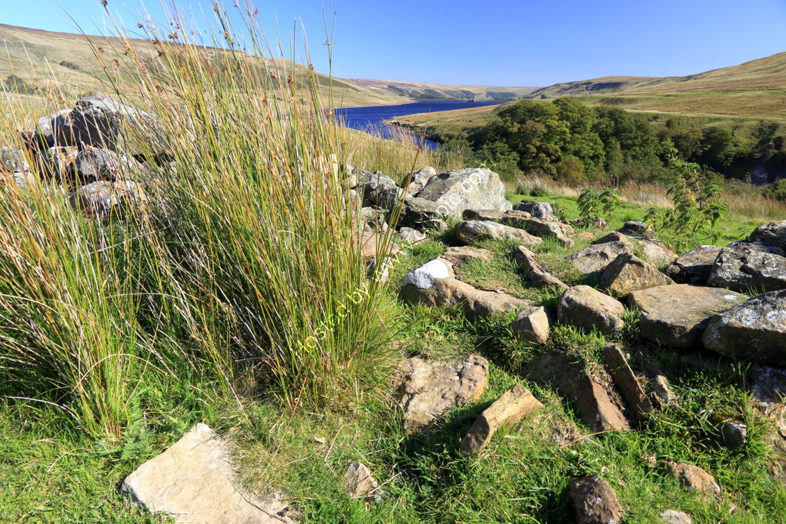 Reeds and stones overlooking Scar House Reservoir