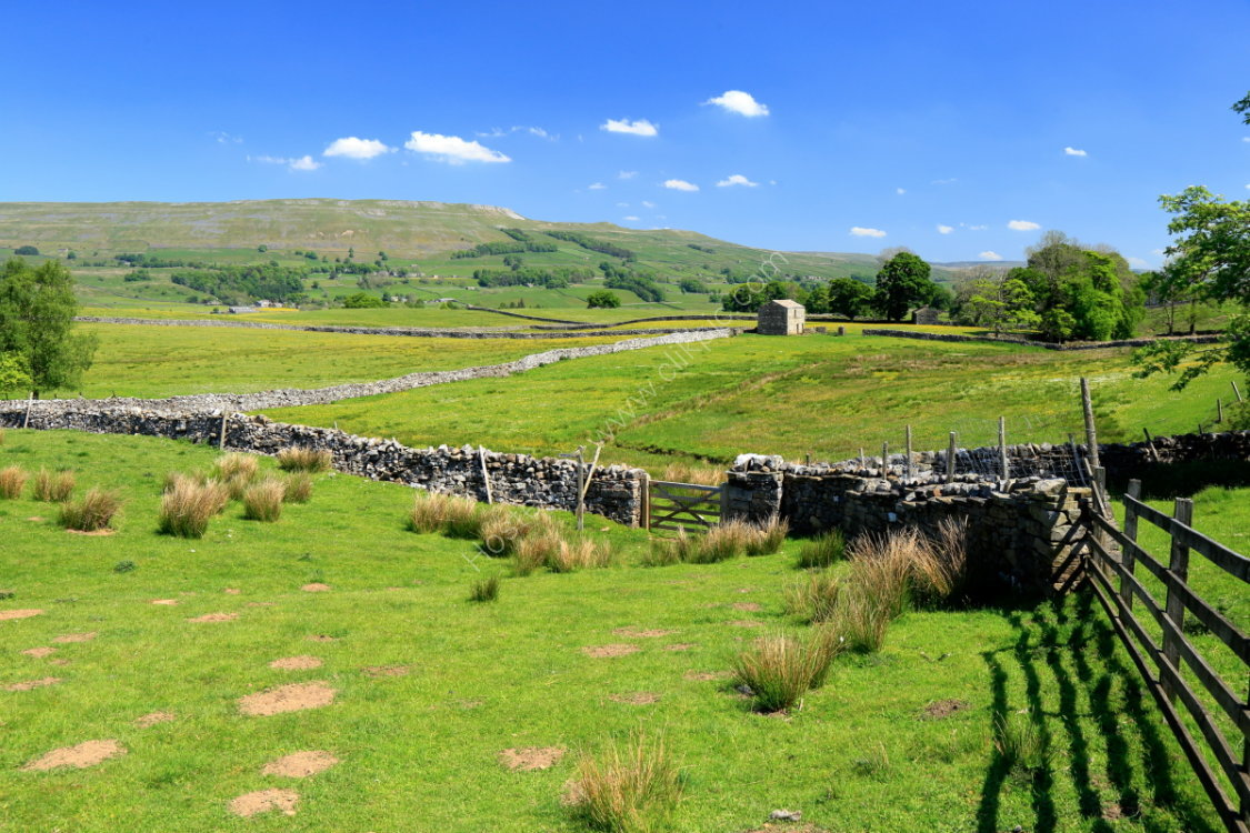 Drystone walls and barn at Spillian Green near Hawes, with Abbotside Common in background