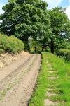 Riffa Lane