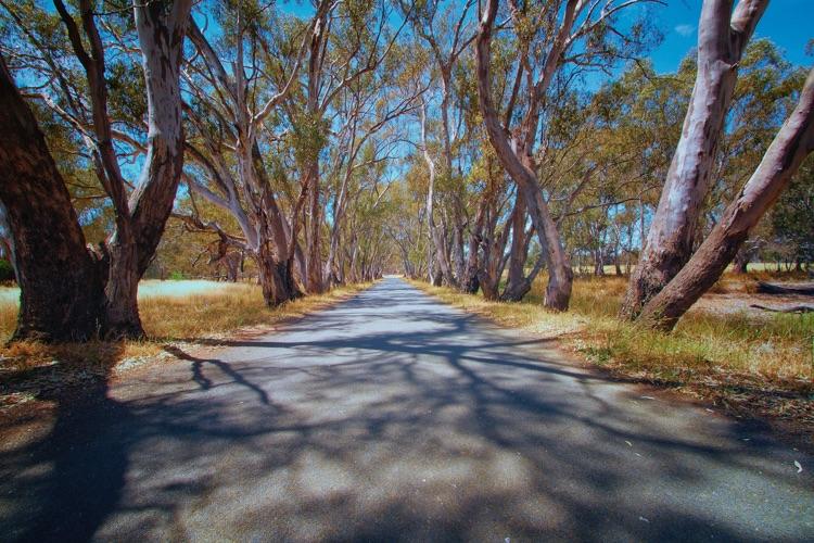 Near Lanncoorie