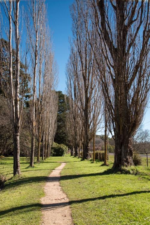 Botanic Gardens Malmsbury - 2