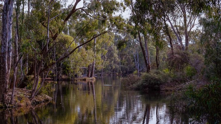 Kennington Reservoir Bendigo Australia
