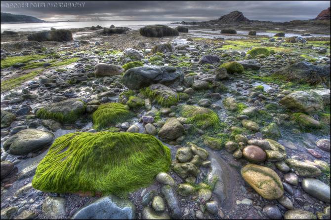 Bay of Fundy, NB, Canada