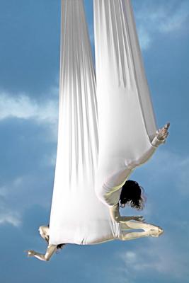Voala Aerial Dance 2