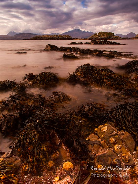 Misty Waters, Tokavaig, Skye