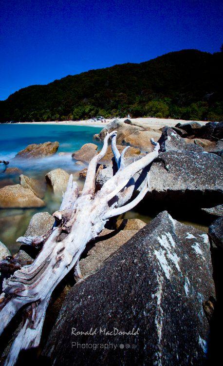 NZ Abel Tasman5
