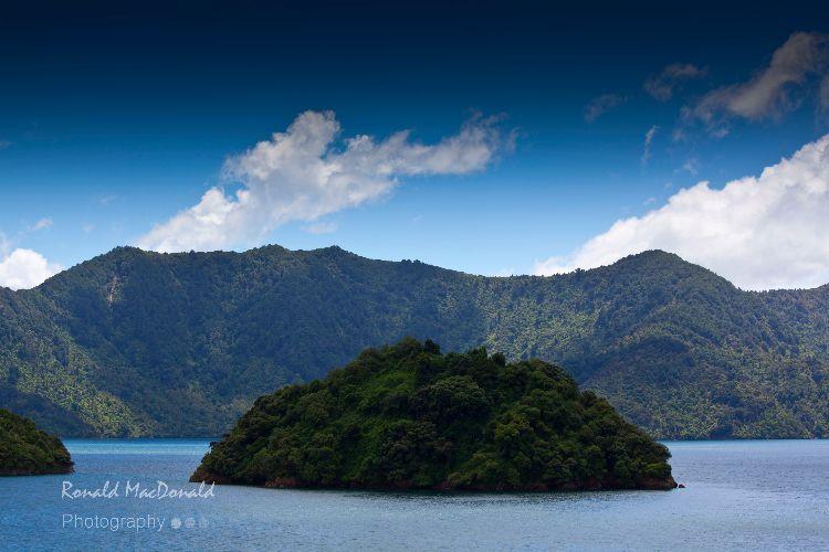 New Zealand18