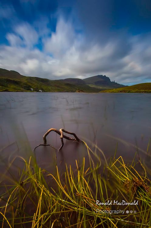 Loch Fada Rushes and the Storr