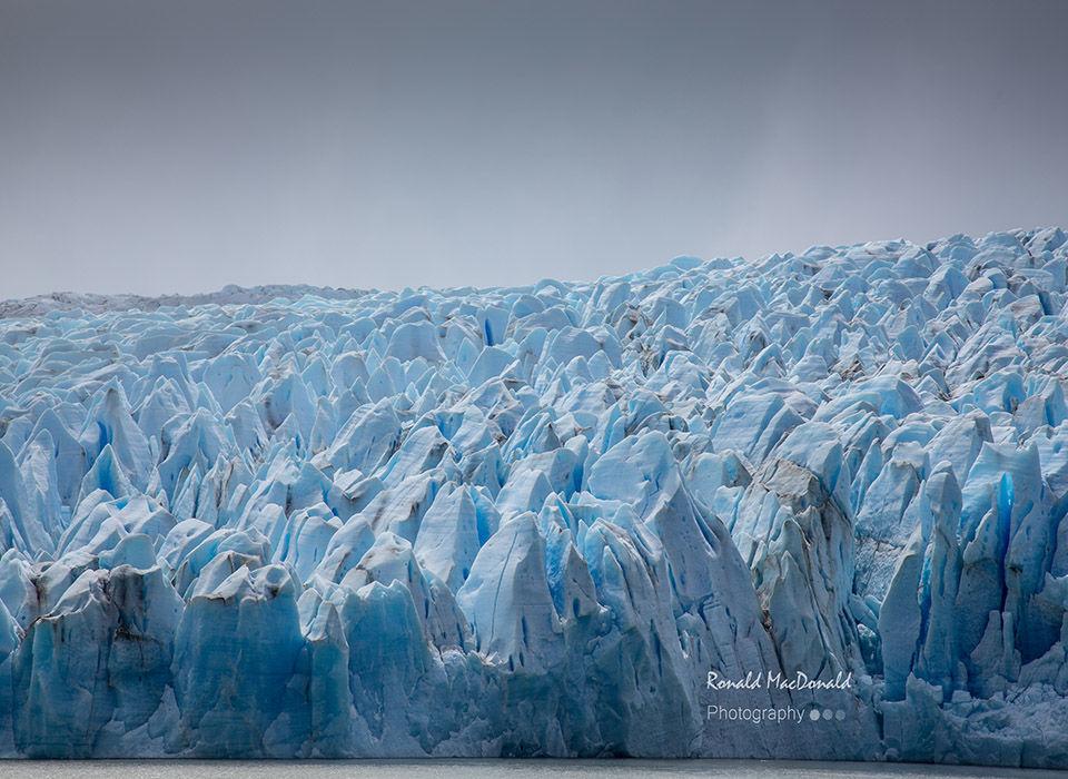 Front Edge of Glacier Grey Chile