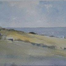 Manx Landscape
