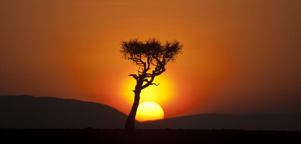 Masai Dawn