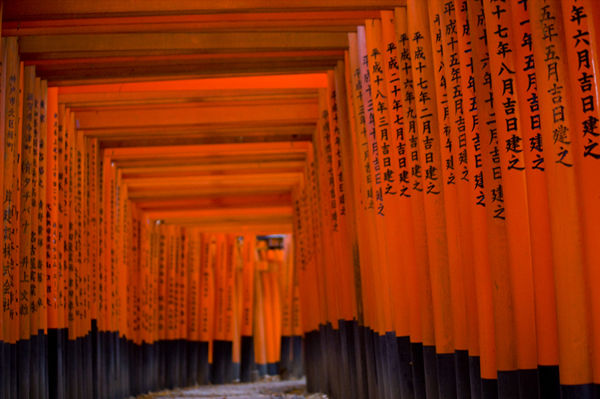 Fushimi Shrine.