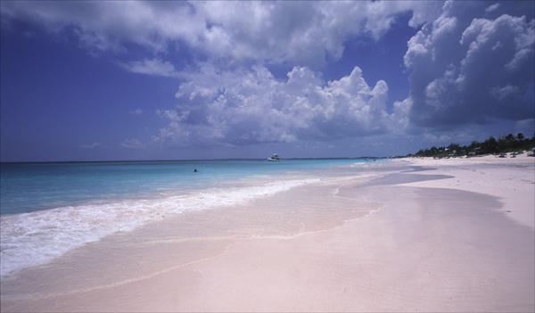 Pink Sands.