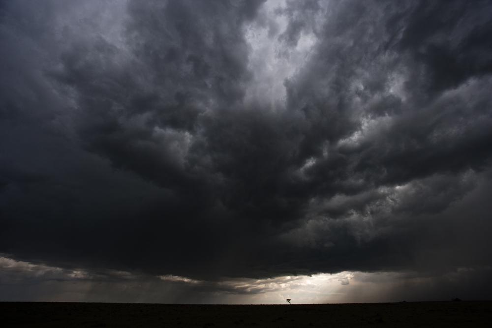 Storm Laden Clouds