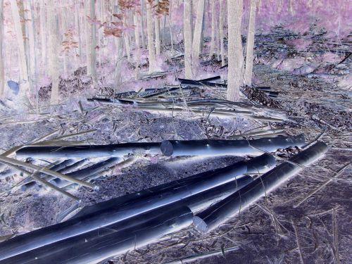 E-scape 4 - digital image (2009)