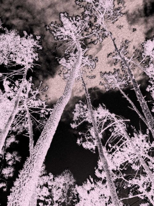 E-scape 7 - digital image (2009)