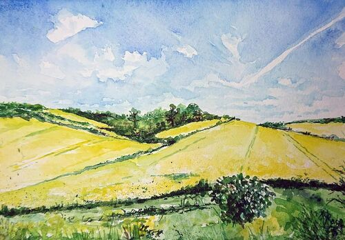 summer feilds, yellow crops and blue skies.