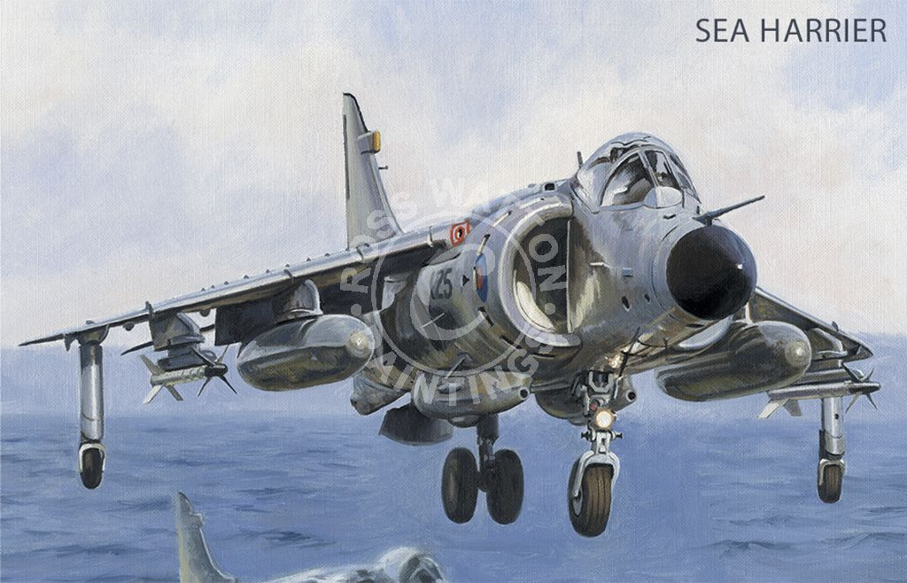 Sea Harrier in the hover about to land on an aircraft carrier deck.