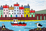 Gulls of St Ives