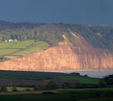 Red Cliffs near Sidmouth