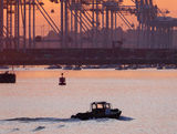 Dock's View