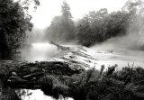 Jubilee Mist