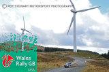 Rally GB 2015