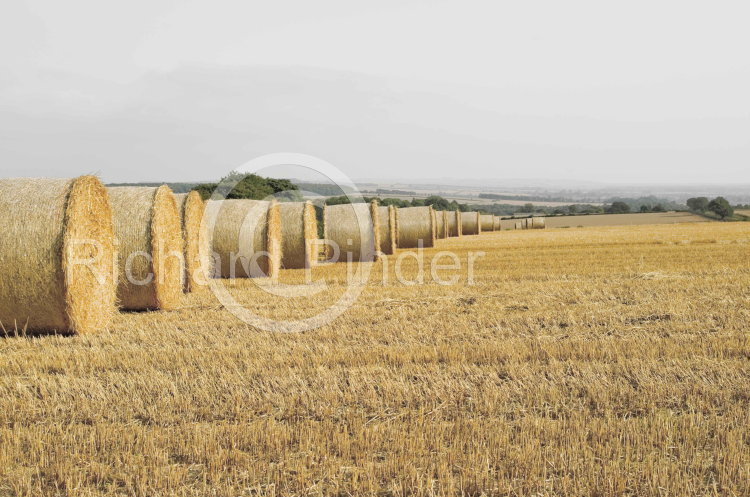 Straw Bales on the East Yorkshire Wolds