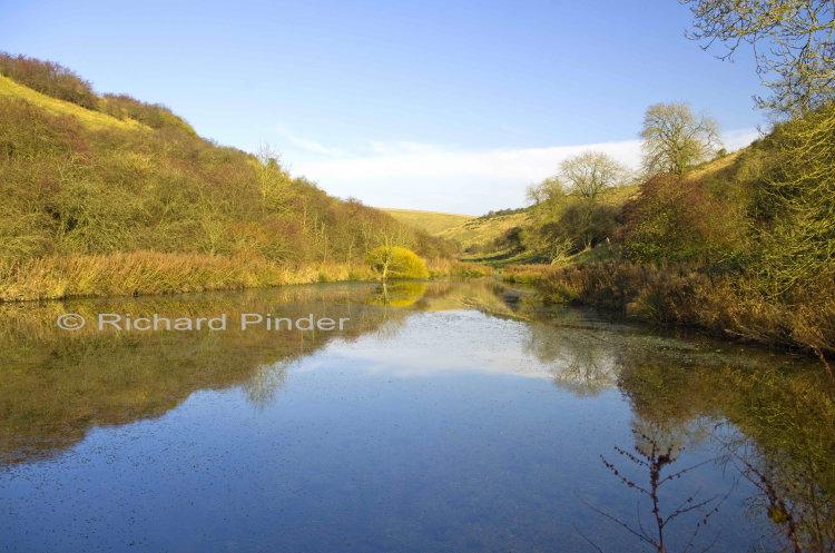 Millington Pasture Pond