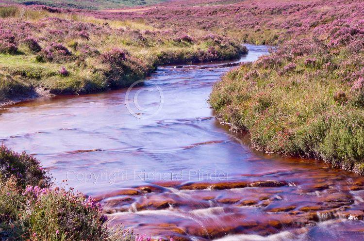 Wheeldale, North York Moors